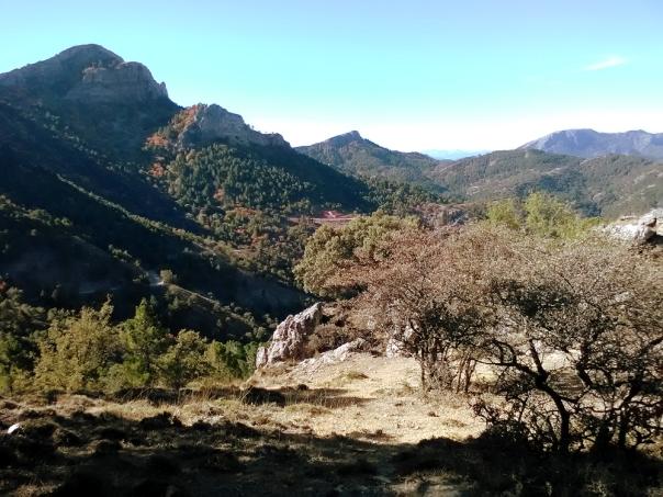 Umbría de La Almenara
